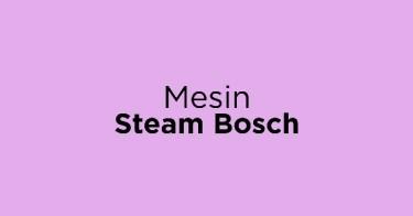 Mesin Steam Bosch