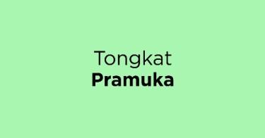 Tongkat Pramuka