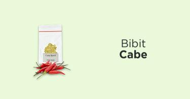 Bibit Cabe Sidoarjo