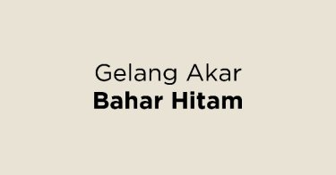 Gelang Akar Bahar Hitam Bandung