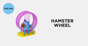 Hamster Wheel Depok