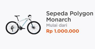 Sepeda Polygon Monarch