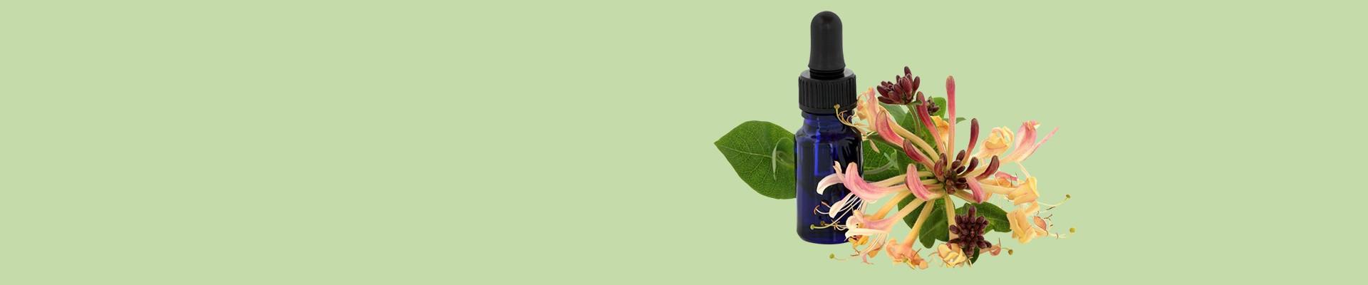 Jual Essential Oil - Aroma Lengkap, Harga Terbaik