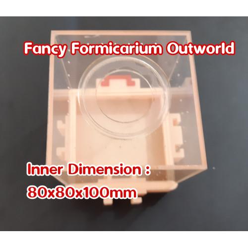 Foto Produk Fancy Formicarium Outworld dari Bali 3D