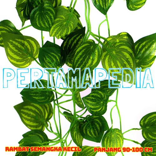 Foto Produk Daun Rambat Plastik/ Daun Rambat Artificial/ Semangka K90 dari PERTAMA PEDIA