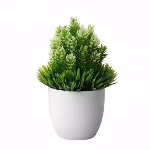 Foto Produk Tanaman Pinus Artificial Flower Dekorasi Bunga [READY Jakarta] - Putih dari JB3 Store