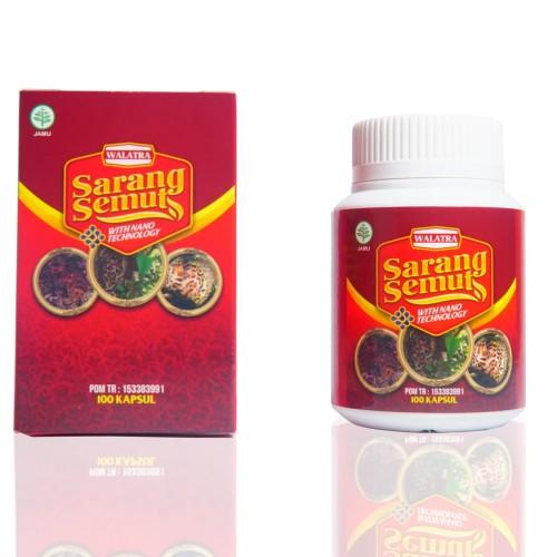 Foto Produk Waltra Sarang Semut Asli Papua dari herbal siger