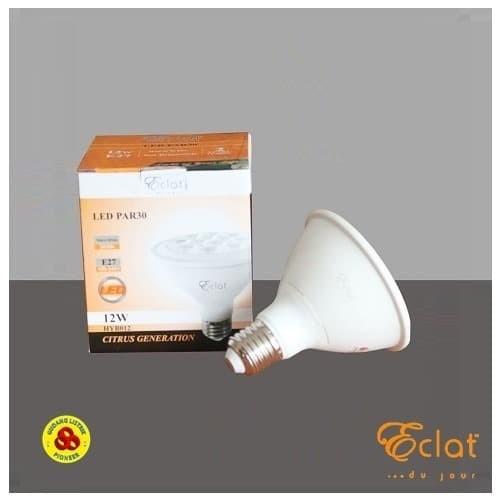Foto Produk Eclat LED PAR30 12W Putih E27 Bohlam Lampu Sorot LED 12 Watt CDL 220V dari Gudang Listrik