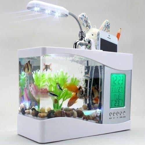 Foto Produk Aquarium Unik dengan Tempat Bolpen dan HP, lampu LED dan Jam Digital dari xintong