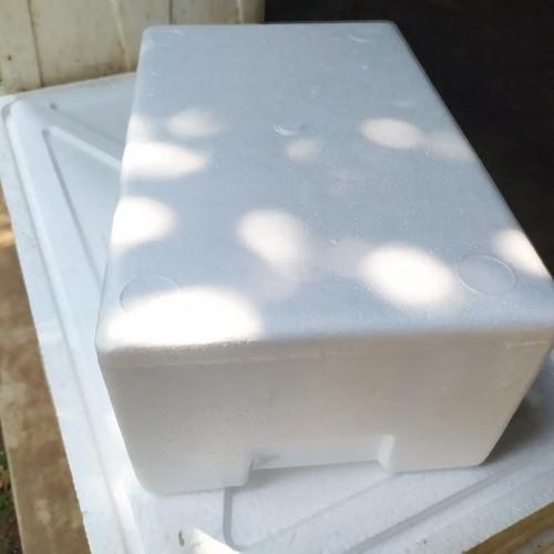 Foto Produk box strofoam dari LobsterMart