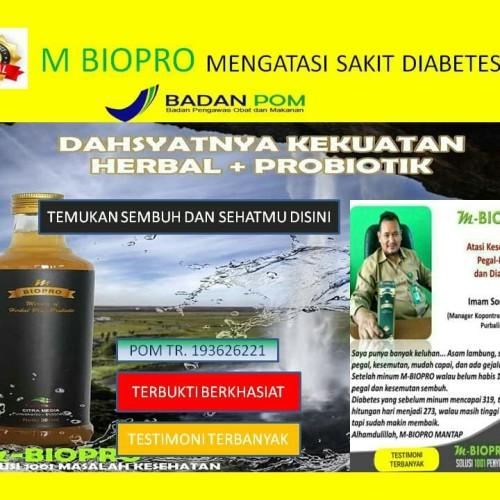 Jual M Biopro M Bio Pro Obat Diabetes Dan Kolesterol Tanpa Efek Samping Kab Magelang Agen M Biopro M Bio Pro Tokopedia
