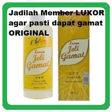 Foto Produk Jelly Gamat Luxor 1000 ml (1 liter) dari Jeli Gamat Luxor