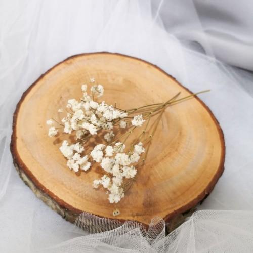 Foto Produk Baby Breath Kering | Dried Flower | Gypsophila dari Von Paramita