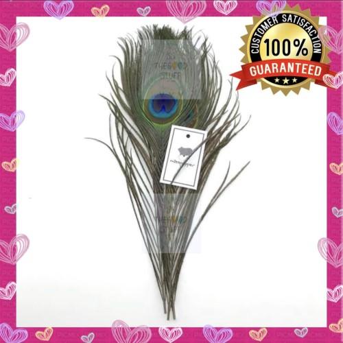 Foto Produk Bulu Merak Asli / Natural Peacock Feather Untuk Craft Premium Quality dari SS TheGoodStuff