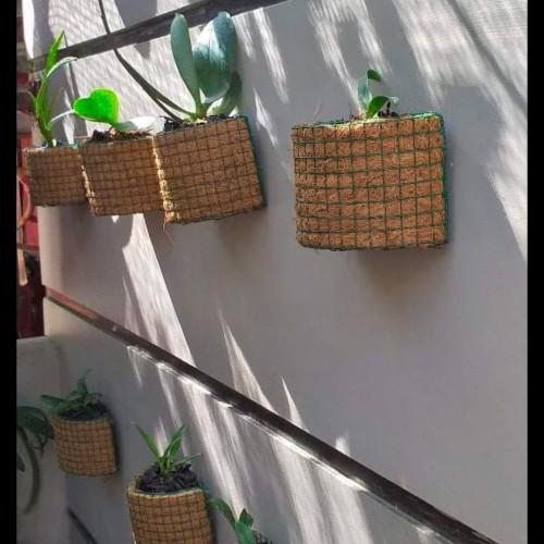Foto Produk Pot tempel serat kelapa media tanam dari Adinata