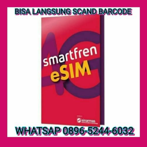 Foto Produk ESIM SMARTFREN FREE 90GB iPhone XR iPhone XS iPhone XS Max iPad Pro - UNLIMITED 1 BLN dari GadgetStore96