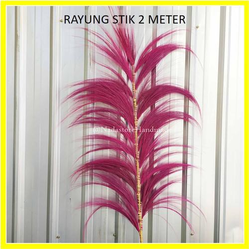 Foto Produk dried flower / Daun Rayung Stick 170 cm Murah - Merah Muda dari Dhila_fashion