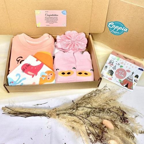 Foto Produk BABY HAMPERS / BABY GIFT SET / KADO LAHIRAN / KADO BAYI PAKET D - BOY 6-12 dari Kuy Blanja