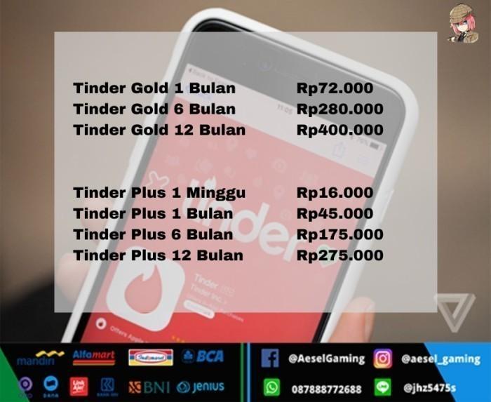 Jual Tinder Plus 12 Bulan Promo Kota Bekasi Aeselrate Gaming 2 Tokopedia