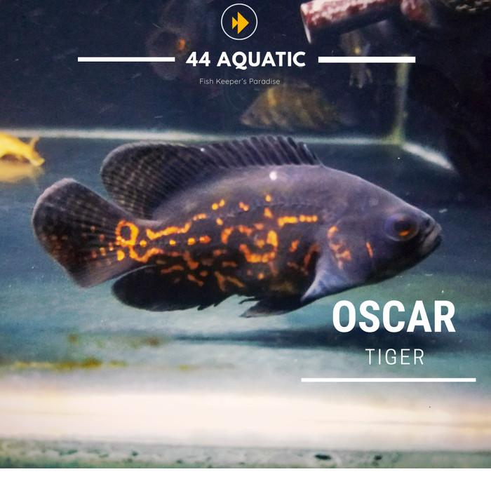 Jual Oskar Hitam Oscar Batik Kota Bekasi 44 Aquatic Tokopedia