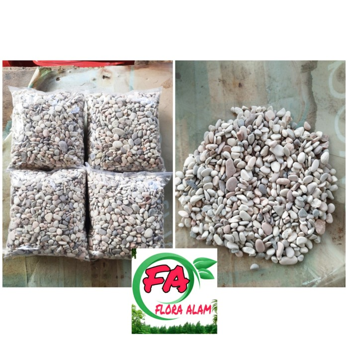 Jual Batu Koral Panca Warna 1kg - Jakarta Utara ...