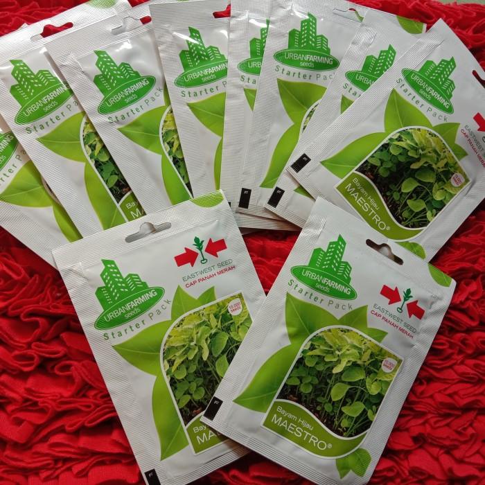 Foto Produk benih bayam hijau panah merah dari Aa818_Hydroponic