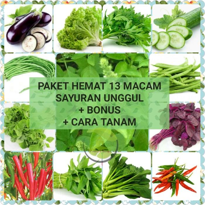 Foto Produk Paket Hemat 13 macam benih sayuran ratusan/benih sayuran/bibit sayur dari VJ berkah shop