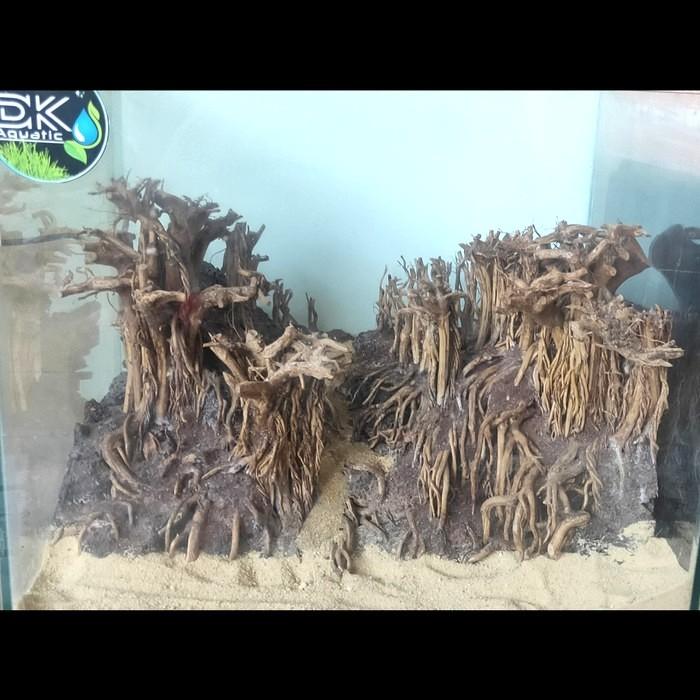 Jual Hardscape Aquascape Forest Jungle Kota Bekasi Dk Aquatic Tokopedia