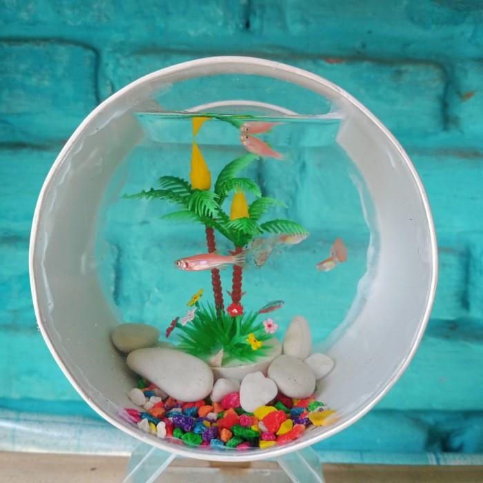 Jual Aquarium Mini Unik Akrilik Pvc Cupang Ikan Hias Kota Bandung Mini Unik Tokopedia