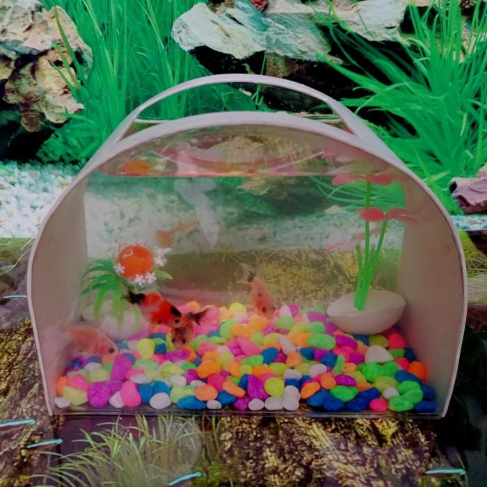 Jual Aquarium Cupang Mini Unik Ikan Hias Kura Kura Kota Bandung Mini Unik Tokopedia