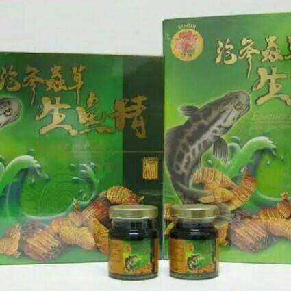 Jual Essence Of Fish American Ginseng Sari Pati Ikan Gabus Isi6 Botol 70ml Jakarta Utara Hennylionel Tokopedia