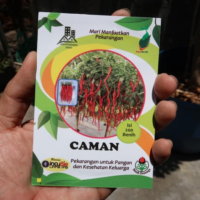 Foto Produk Cabai Keriting Kopay Caman IPB dari mewalik-jaya