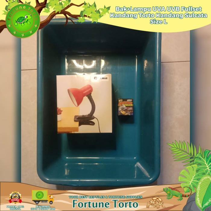 Foto Produk Bak+Lampu UVA UVB/Fullset Kandang torto/Kandang Sulcata/Size L dari Fortune Torto