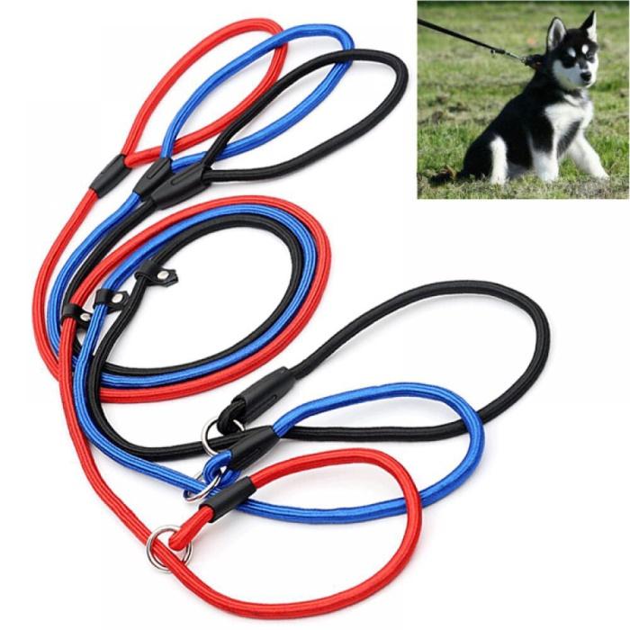 Foto Produk Dog Leash Size Medium/ Leash Anjing/ Tali Tuntun Anjing dari Alina Petstore