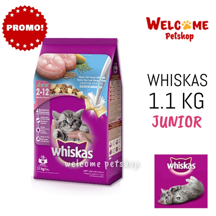 Whiskas 1.1 kg / 1.1kg / 11 kg junior ocean fish dry - makanan kucing