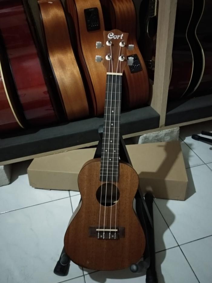 harga Gitar ukulele top quality cort Tokopedia.com