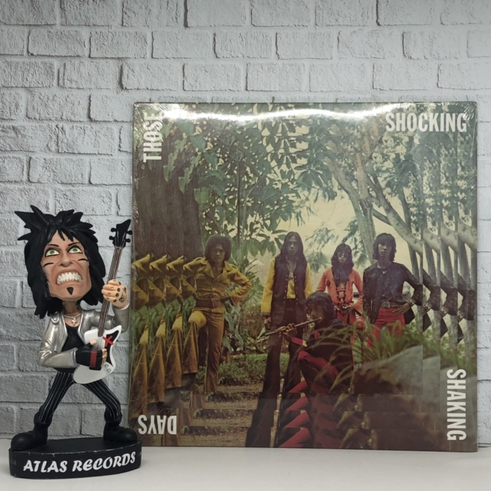 harga Vinyl / piringan hitam va - those shocking shaking days Tokopedia.com