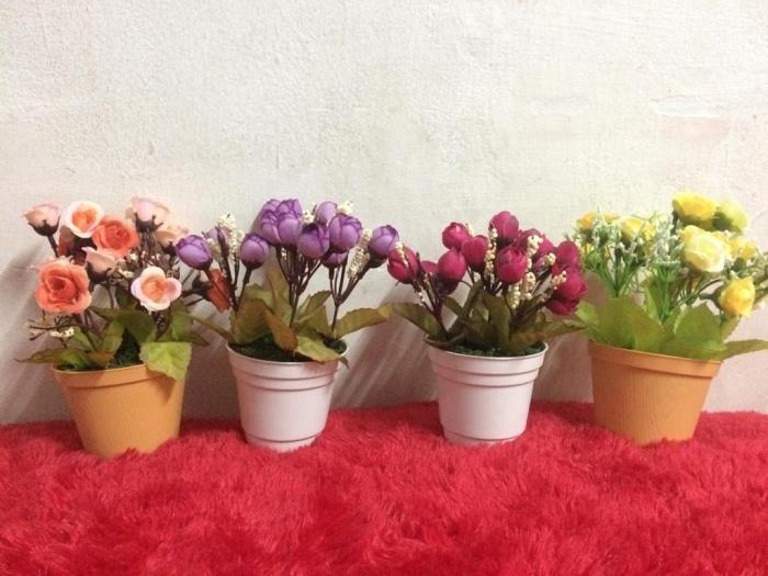Jual Pot Bunga Kecil Untuk Di Meja Kota Bekasi Kucing Rumahan