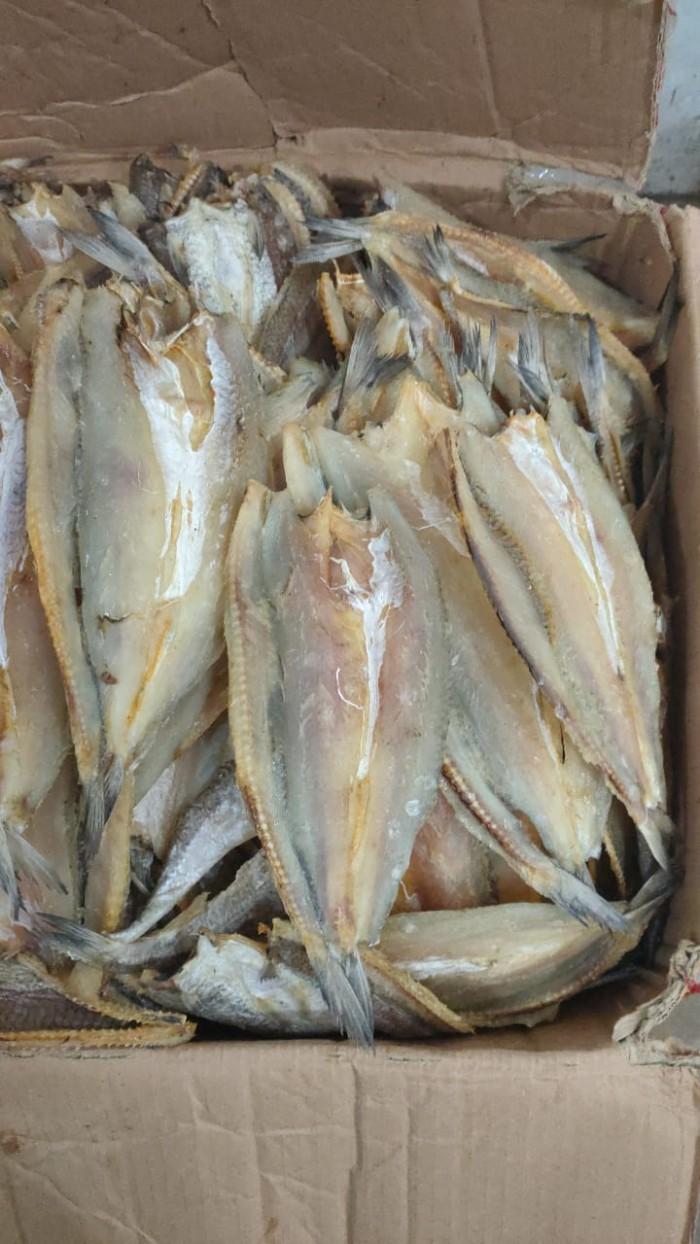 Jual Bukol Belah Gabus Pasir Belah Kota Tanjung Balai Segala Jenis Ikan Kering