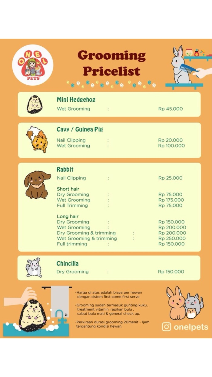 Jual JASA GROOMING KELINCI CAVY LANDAK MINI Kab Tangerang El Pet Store