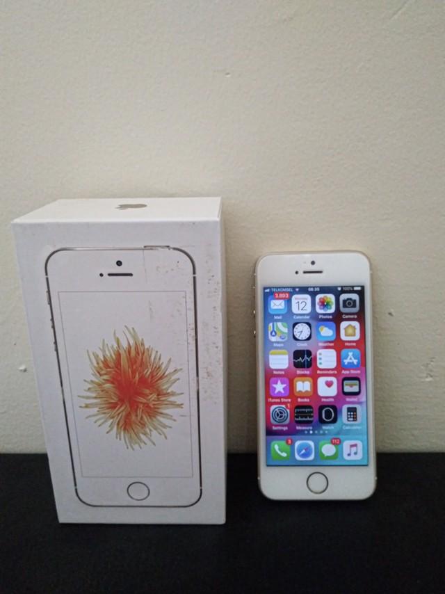 Jual Apple iPhone SE 64GB 100% Original Bekas Second Bonus ...