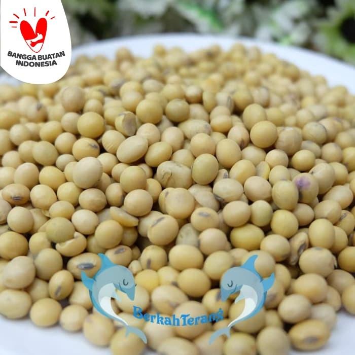 Foto Produk Biji Kacang Kedelai Super / Kacang Kedele 500gr dari berkah terang