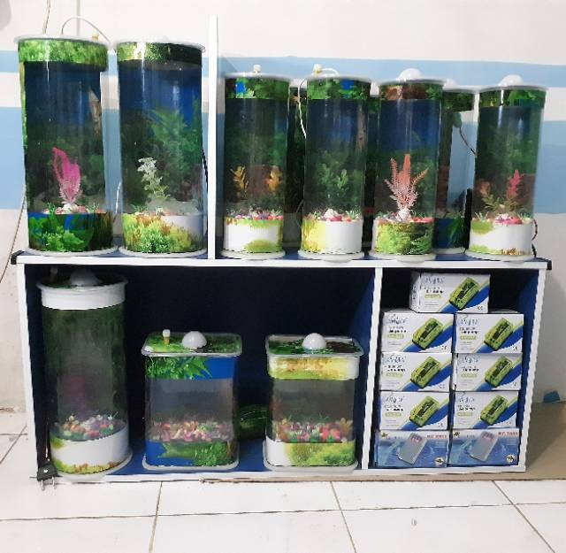 Jual Aquarium Mini Ikan Hias Cupang Guppy Bisa Lampu Tidur Mesin Kab Bekasi Nozi Shop25 Tokopedia