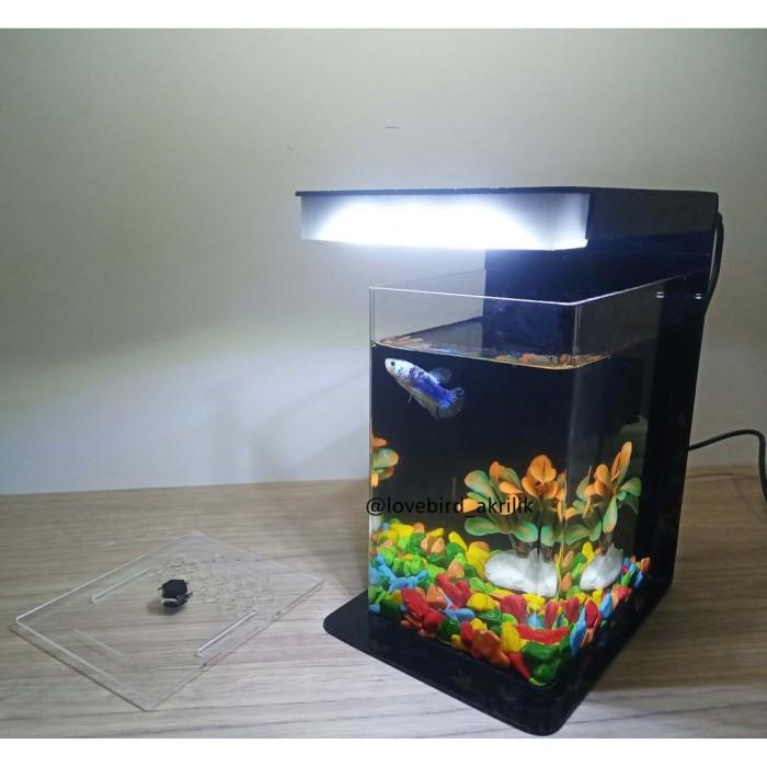 Jual Betta Fish Tank Aquarium Mini Akrilik Mini Aquascape Aquascape Kab Bekasi Nozi Shop25 Tokopedia