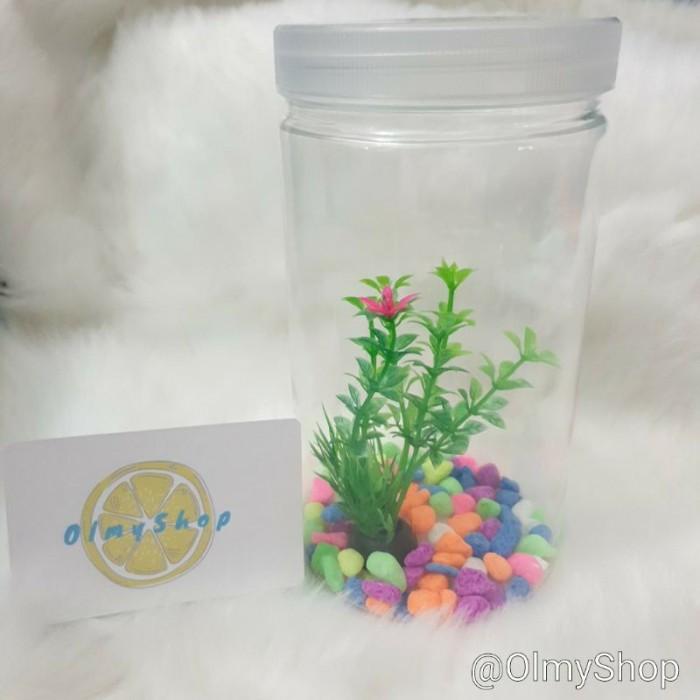 Jual Set Aquarium Guppy Bulat Aquarium Ikan Cupang Aquarium Mini Aquarium Kab Bekasi Katonscape25 Tokopedia