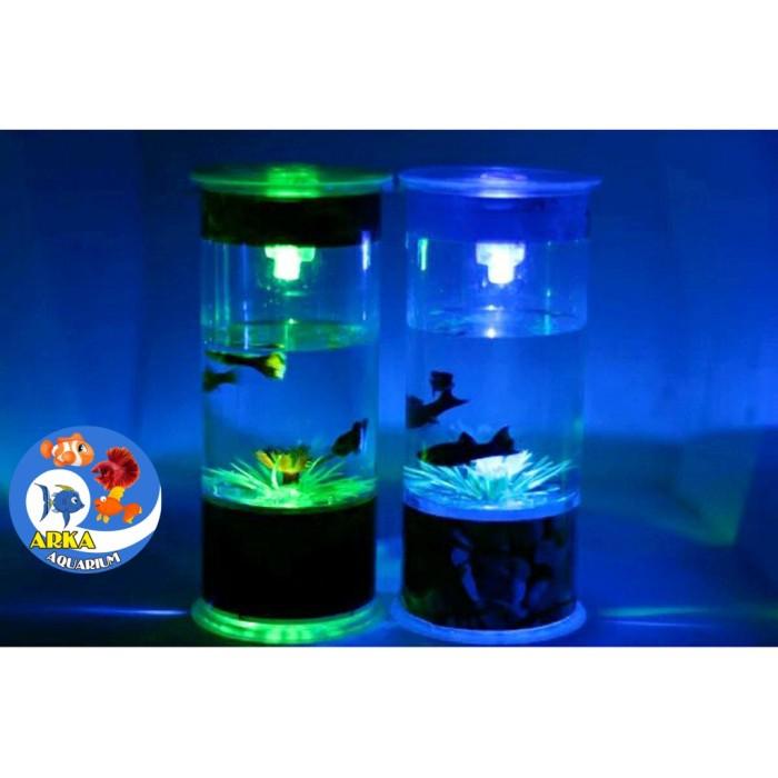 Jual Aquarium Mini Aquarium Ikan Cupang Kab Bekasi Alshadscape25 Tokopedia