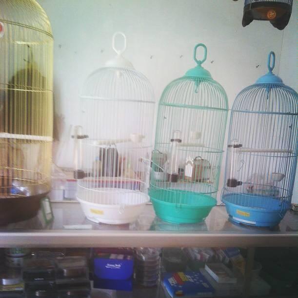 harga Sangkar burung besi kecil Tokopedia.com
