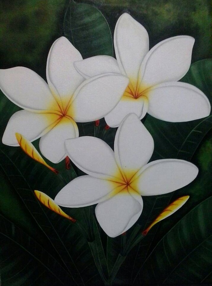 harga Lukisan bunga kamboja Tokopedia.com
