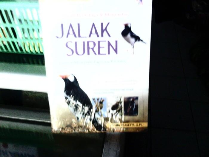 harga Jalak suren Tokopedia.com
