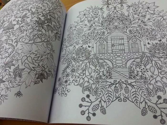 Secret Garden Coloring Book Big Size